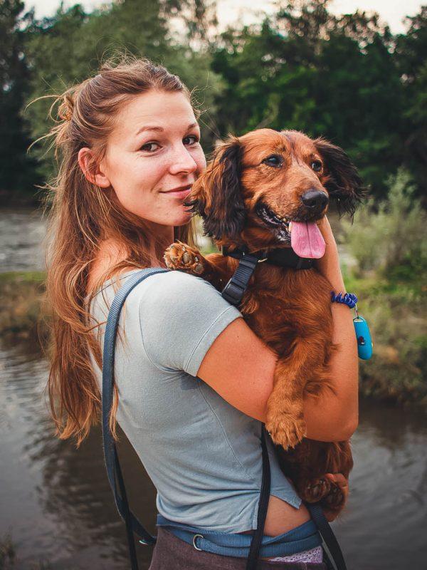 begleittier hundetrainer und hund